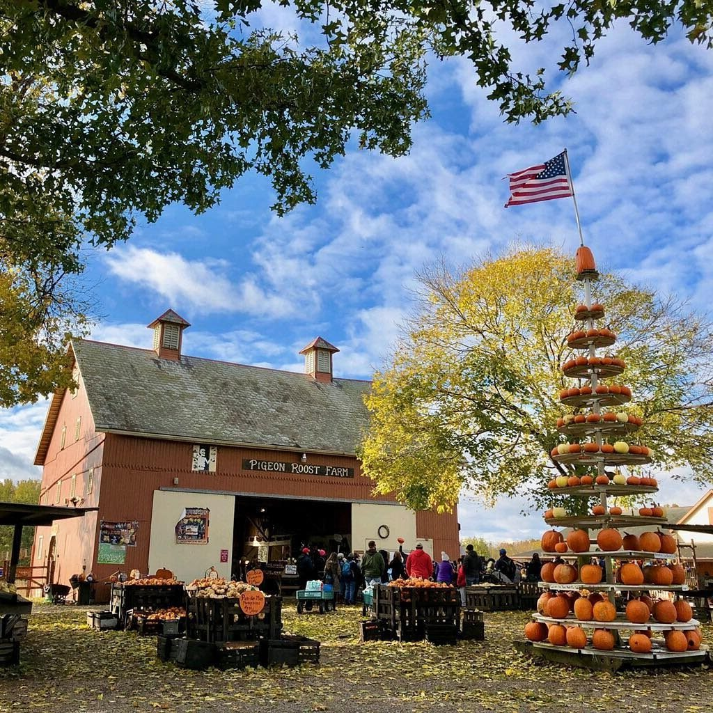 best pumpkin patches in ohio